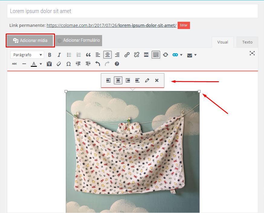como fazer posts no seu wordpress