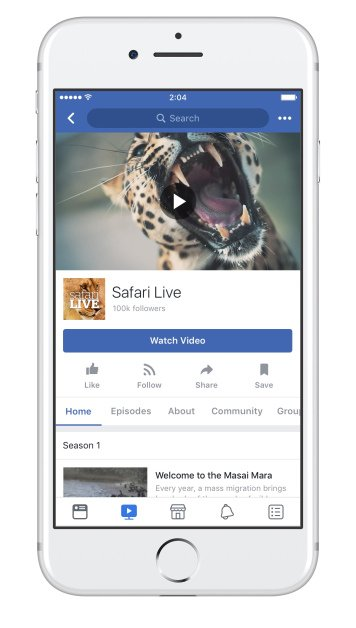 facebook watch show pages